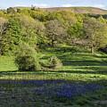 Church Stretton Landscape by Philip Pound