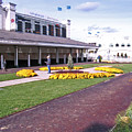 Churchill Downs Paddock Area by Marian Bell