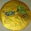 Cicada On Gold by Debbi Saccomanno Chan