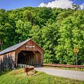 Cilley Bridge by Robert Mitchell