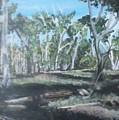 Cimmeron Grasslands by Robert Levene