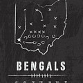 Cincinnati Bengals Art - Nfl Football Wall Print by Damon Gray