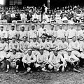 Cincinnati Reds, Baseball Team, 1919 by Everett