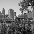 Cincinnati Skyline Through Trees by John McGraw