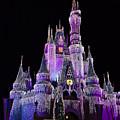 Cinderellas Castle At Night by Carmen Del Valle