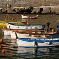 Cinque Terre  by Carl Jackson