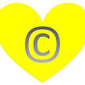 Circle C Yellow by Catherine Lott