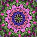 Circle Of Flowers by Wanda-Lynn Searles