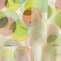 Circle Pattern Overlay II by Ruth Palmer