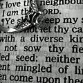 Circled Is The Word Love by LKB Art and Photography