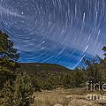 Circumpolar Star Trails Over The Gila by Alan Dyer