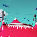 Circus by Dylan Murphy