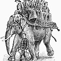 Circus: Elephant, C1901 by Granger