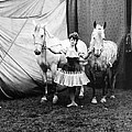 Circus: Rider, C1904 by Granger