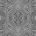 Circus Stripes by Douglas Christian Larsen