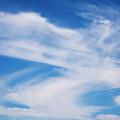 Cirrus Clouds by Steve Ohlsen