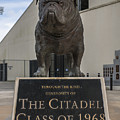 Citadel Bulldog by Dale Powell