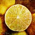 Citrus by Barbara Berney
