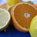 Citrus On Blue Plate by Kim Pascu
