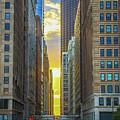 City Canyon by Tony HUTSON