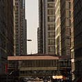 City Life by Andrei Shliakhau