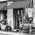 City Of Charleston Sc by Yvette Wilson