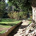 City Park Rhodes Greece by Brett Winn