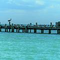 City Pier On Anna Maria Island by Doug Camara