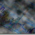 Cityscape by David Healey