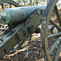 Civil War Cannon by Michael Peychich