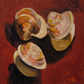 Clam Shells by Hillary Gross