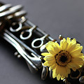 Clarinet And Flower by Angela Murdock