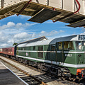 Class 31 Diesel 1 by Steve Purnell