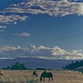 Classic Country Scene by Trance Blackman