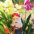 Classic Gnome by Herbert Rioja