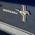 Classic Mustang Logo Closeup by Mike Reid