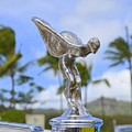 Classic Rolls Royce Hood Ornament by Mary Deal