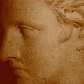 Classical Head by Susan Grissom
