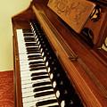 Vintage Organ by Linda Carol Case
