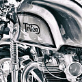 Classical Triton Cafe Racer by Tim Gainey
