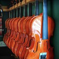 Classical Violins by John Myers