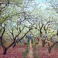 Claude Monet Orchard In Bloom by MotionAge Designs