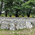 Clava Cairn Stones 0750 by Teresa Wilson