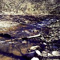 Cleansing Stream by Amy-Elizabeth Toomey