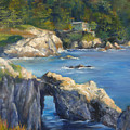 Clear Day At Point Lobos by Norah Brown