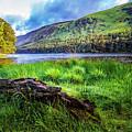 Clear Waters Of Glendalough by Debra and Dave Vanderlaan