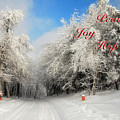 Clearing Skies Christmas Card by Lois Bryan