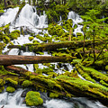 Clearwater Falls And Rapids by Greg Nyquist