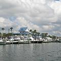 Clearwater Florida by Lita Kishbaugh