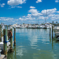 Clearwater Marina by John Greco